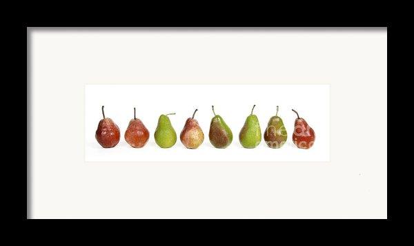 Pears Framed Print By Bernard Jaubert