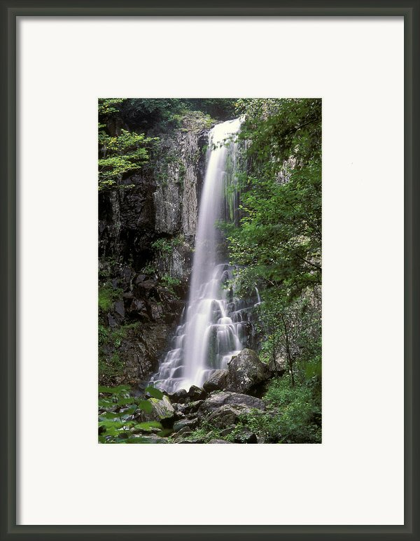 Ussuri Territory Framed Print By Anonymous