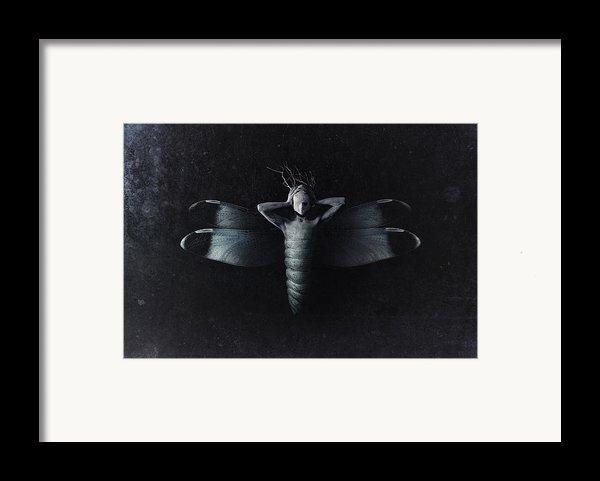 4779105 Framed Print By Victor Slepushkin