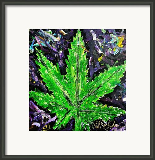 5150 Framed Print By Neal Barbosa