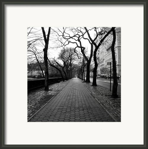 5th Ave Nyc Framed Print By Dillon Milardo