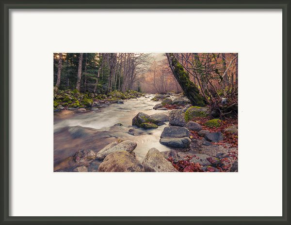 Landscape - Photography Framed Print By Lyubomir Kanelov