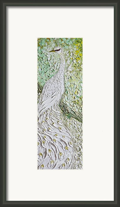 Peacock Framed Print By Willson Lau