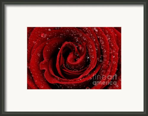 Red Framed Print By Mark Johnson