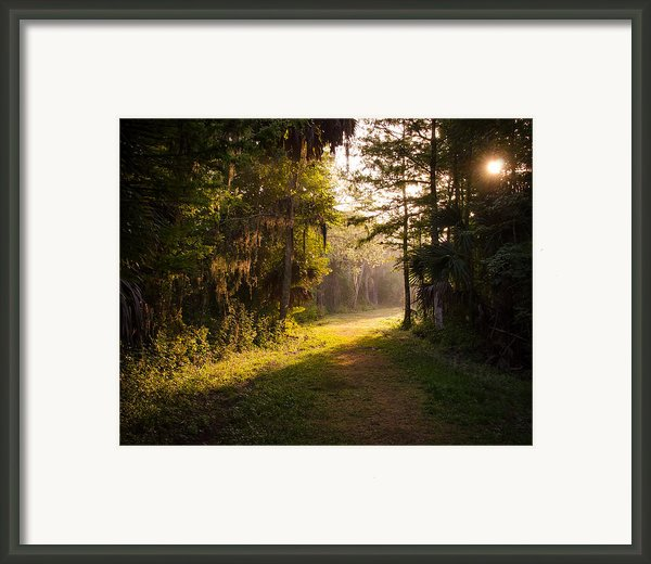 Untitled Framed Print By Bill Martin