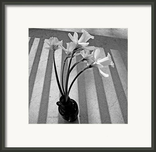A Brief Moment Framed Print By Chris Berry