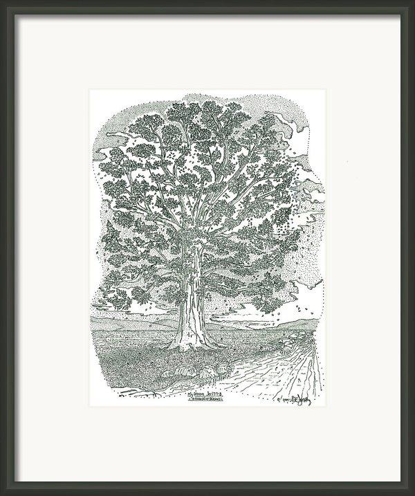 A Change Of Seasons Framed Print By Glenn Mccarthy Art And Photography