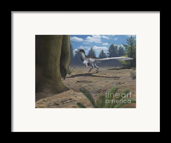 A Deinonychosaur Leaves Tracks Framed Print By Emily Willoughby