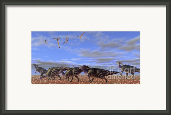 A Herd Of Parasaurolophus Dinosaurs Framed Print By Corey Ford