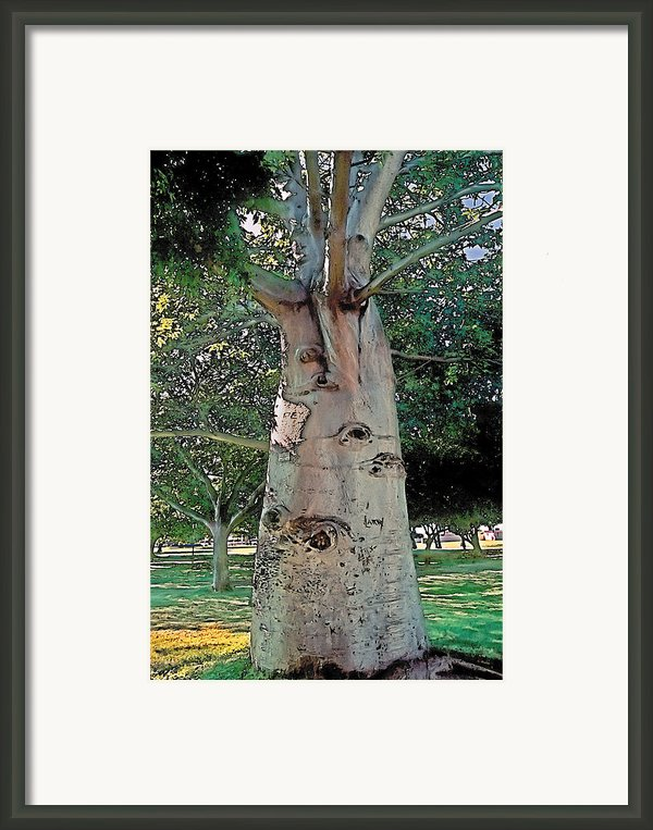 A Lifetime Of Scars Framed Print By Terry Reynoldson