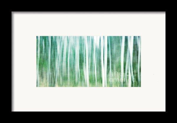 A Matter Of Blues Framed Print By Priska Wettstein