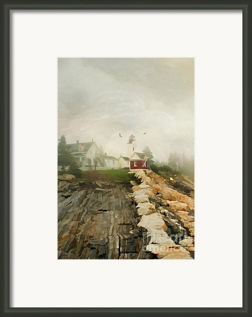 A Morning In Maine Framed Print By Darren Fisher