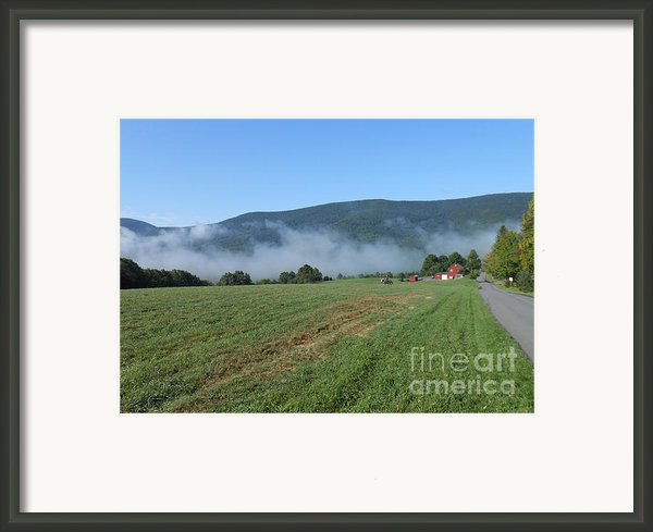 A Morning Ride On Our Paso Fino Stallions Framed Print By Patricia Keller