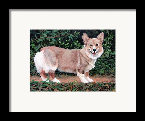 A Portrait Of Pickle Framed Print By Sandra Chase