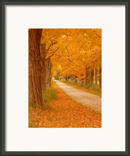 A Romantic Country Walk In The Fall Framed Print By Lingfai Leung