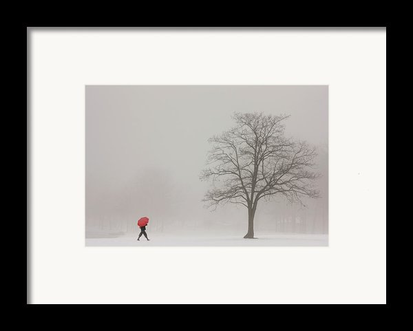 A Shortcut Through The Snow Framed Print By Tom York Images