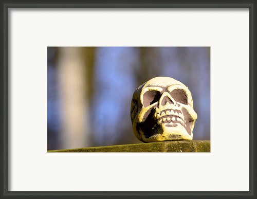 A Skull In Color Framed Print By Tommy Hammarsten