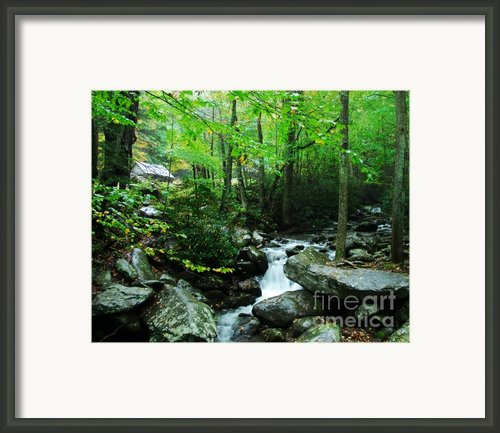 A Smoky Mountain Stream 2 Framed Print By Mel Steinhauer