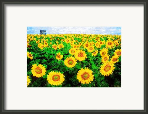 A Sunny Day With Vincent Framed Print By Sandy Macgowan
