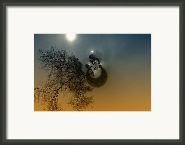 A Tree In The Sky Framed Print By Jeff  Swan