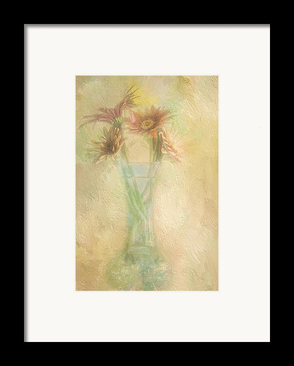 A Vase Of Gerbera Daisies In The Sun Framed Print By Diane Schuster