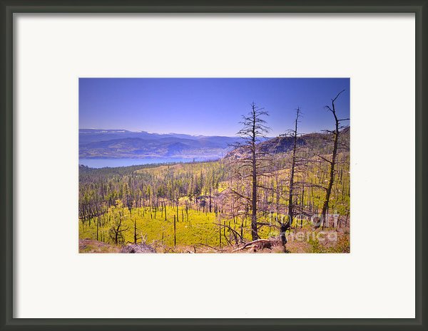 A View From Okanagan Mountain Framed Print By Tara Turner