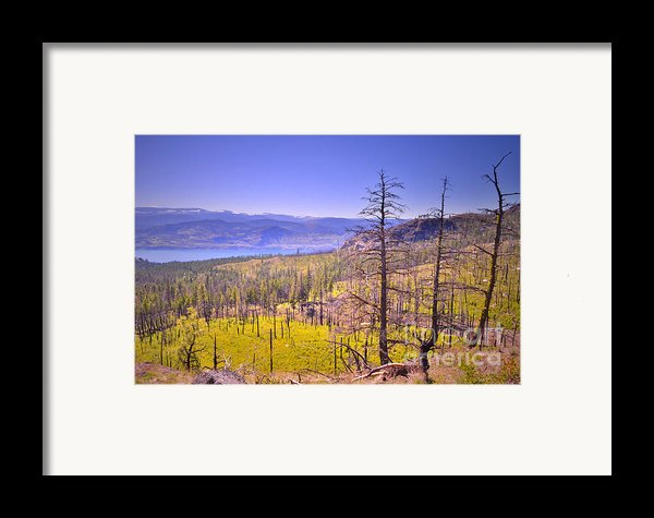 A View From Okanagan Mountain Framed Print By Tara Turner