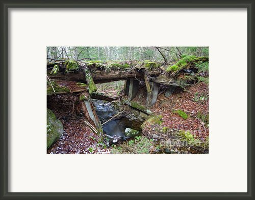 Abandoned Boston And Maine Railroad Timber Bridge - New Hampshire Usa Framed Print By Erin Paul Donovan