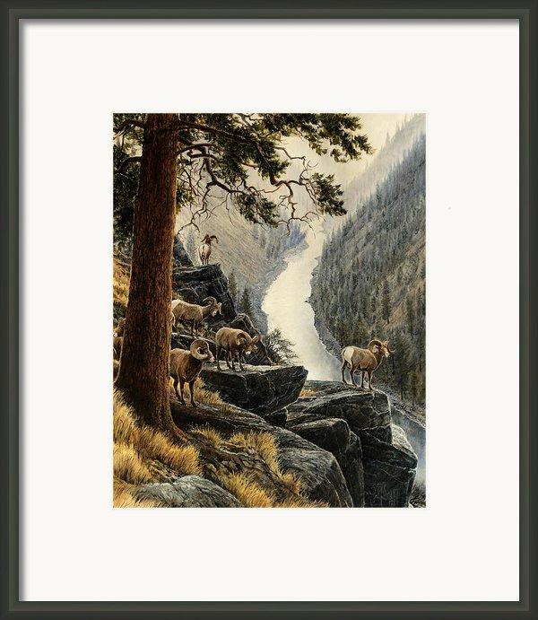 Above The River Framed Print By Steve Spencer