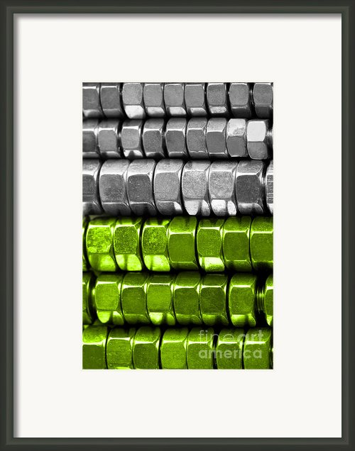 Absolutely Nuts Lime Green Wall Art I Framed Print By Natalie Kinnear