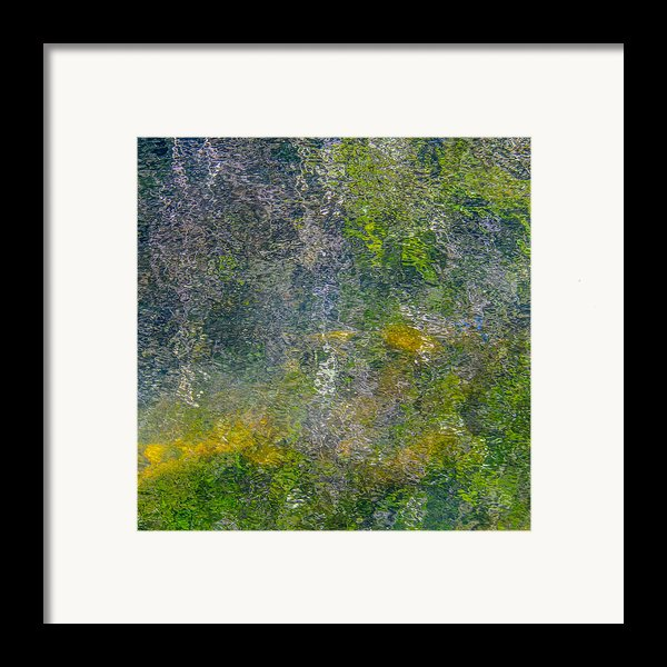 Abstract By Nature Framed Print By Roxy Hurtubise