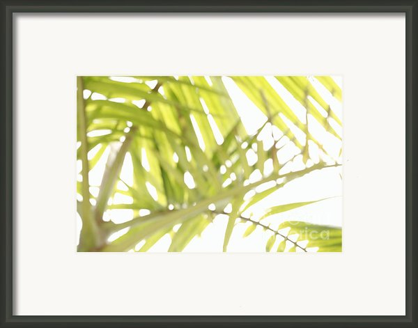 Abstract Foliage Framed Print By Gaspar Avila