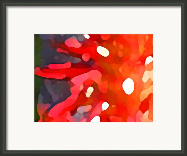 Abstract Red Sun Framed Print By Amy Vangsgard