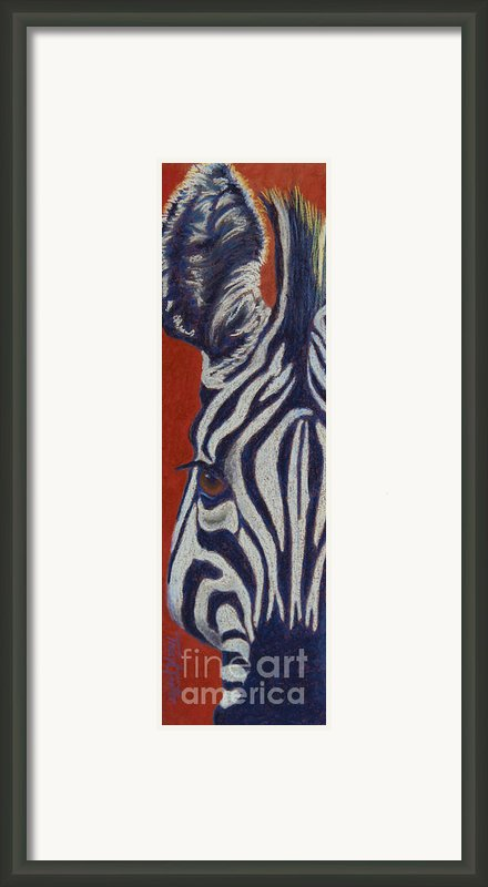 African Stripes Framed Print By Tracy L Teeter