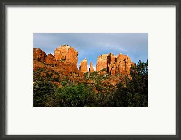 Afternoon Delight Framed Print By Jag Fergus