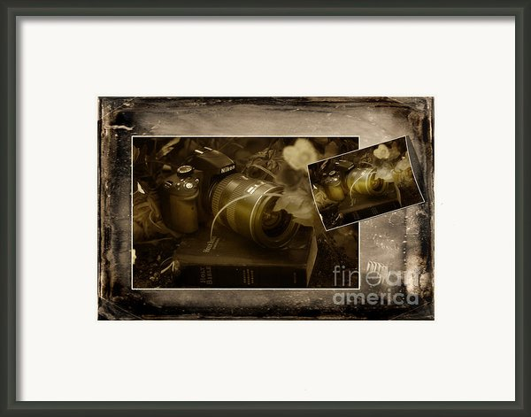 All Gods Creations Are Beautiful In The Eye Of The Beholder Framed Print By Robert Weiman