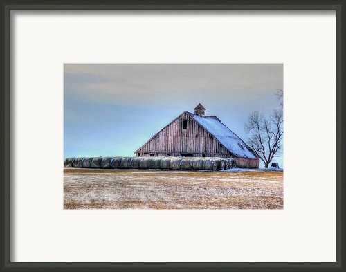 Allurement Framed Print By Thomas Danilovich
