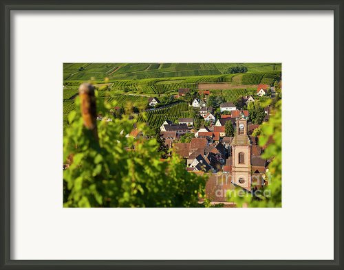 Alsace Morning Framed Print By Brian Jannsen