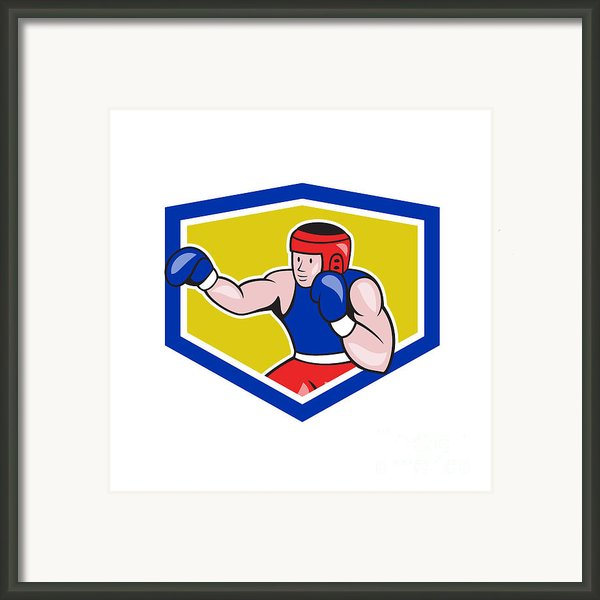 Amateur Boxer Boxing Shield Cartoon Framed Print By Aloysius Patrimonio
