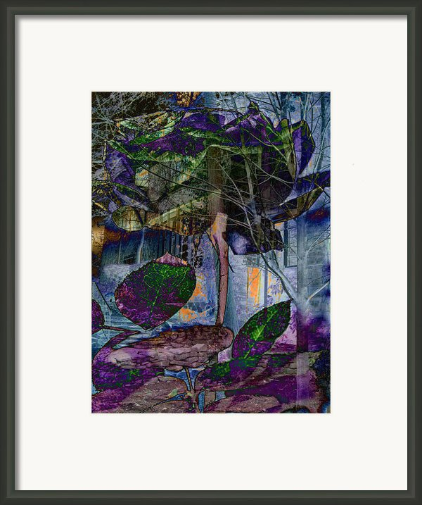 American Dream Enchanted Framed Print By Lisa Noneman