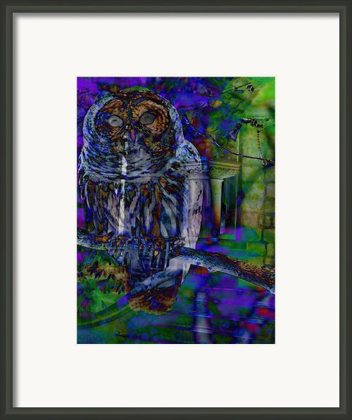 American Dream Haunted Framed Print By Lisa Noneman