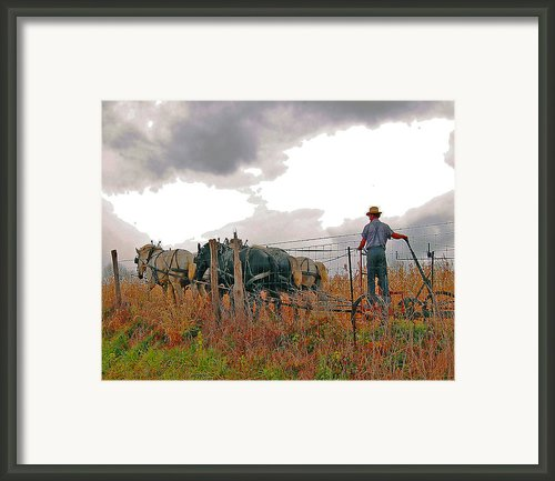 Amishman Driving Plow Framed Print By Brian Graybill