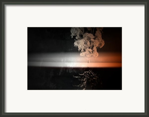 Anchor Framed Print By Mark  Ross