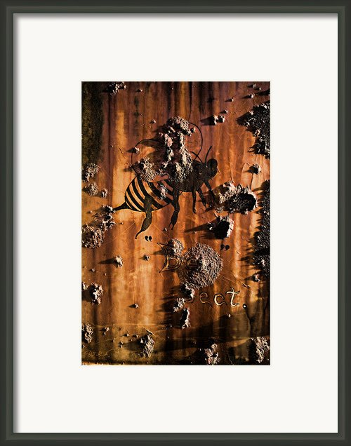 Angel Island State Park California - Bee Section Air Duct -  Bee Artwork Framed Print By David Rigg