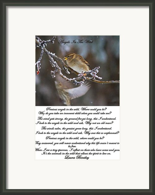 Angels In The Wild Poem Framed Print By Laura Bentley