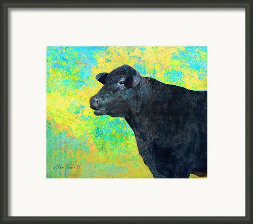 Animals Cow Black Angus  Framed Print By Ann Powell