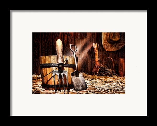 Antique Gardening Tools Framed Print By Olivier Le Queinec
