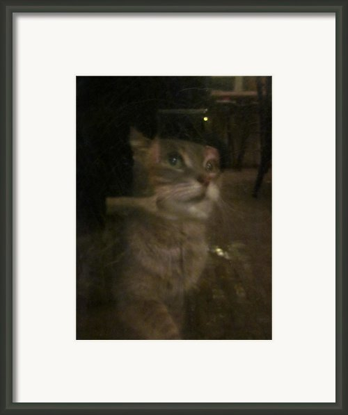 Apparition Of Lucy Framed Print By Guy Ricketts