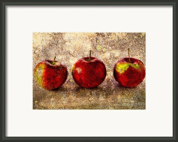 Apple Framed Print By Bob Orsillo