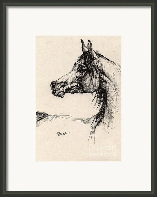 Arabian Horse Drawing 26 Framed Print By Angel  Tarantella